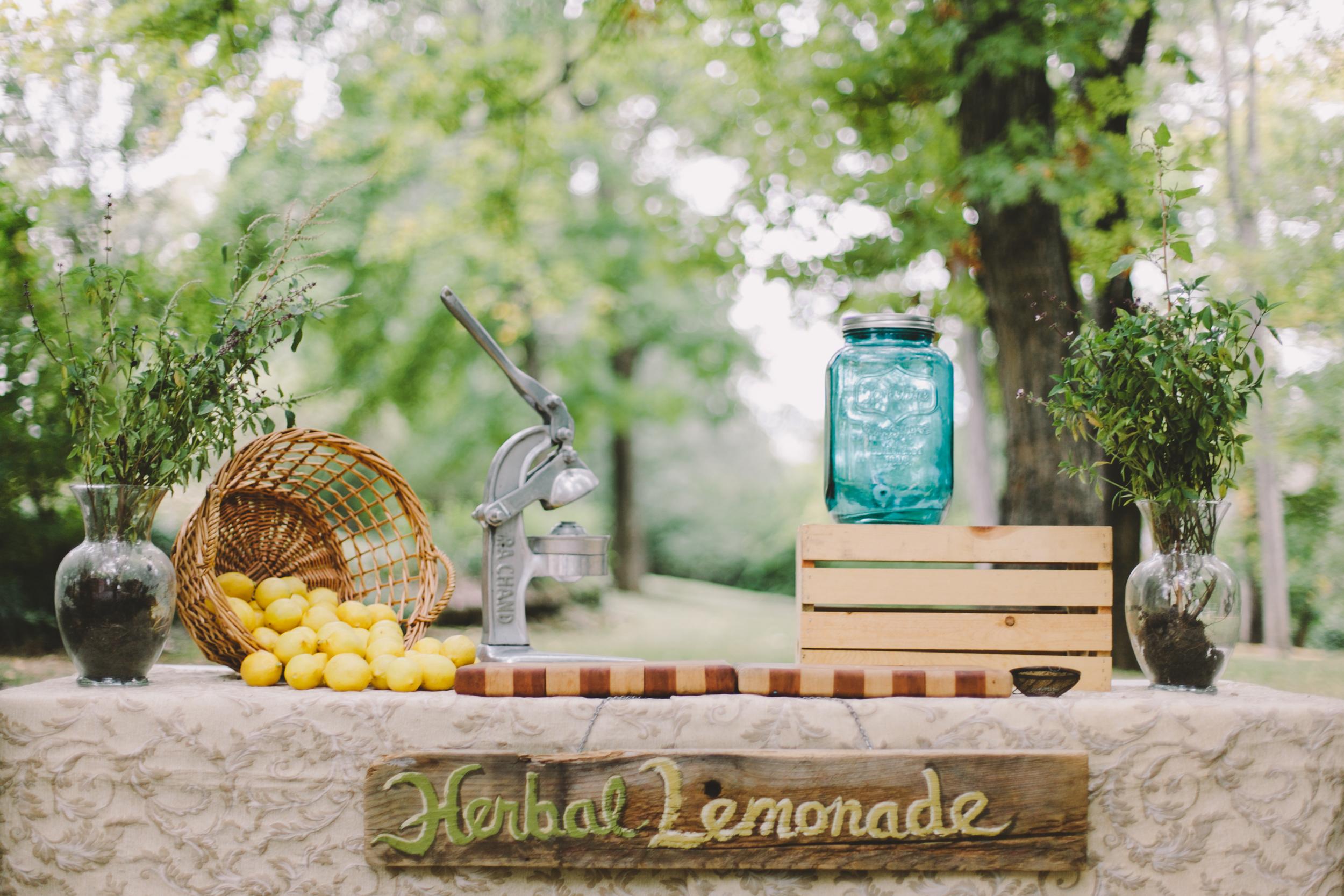 Lemonade-8.jpg
