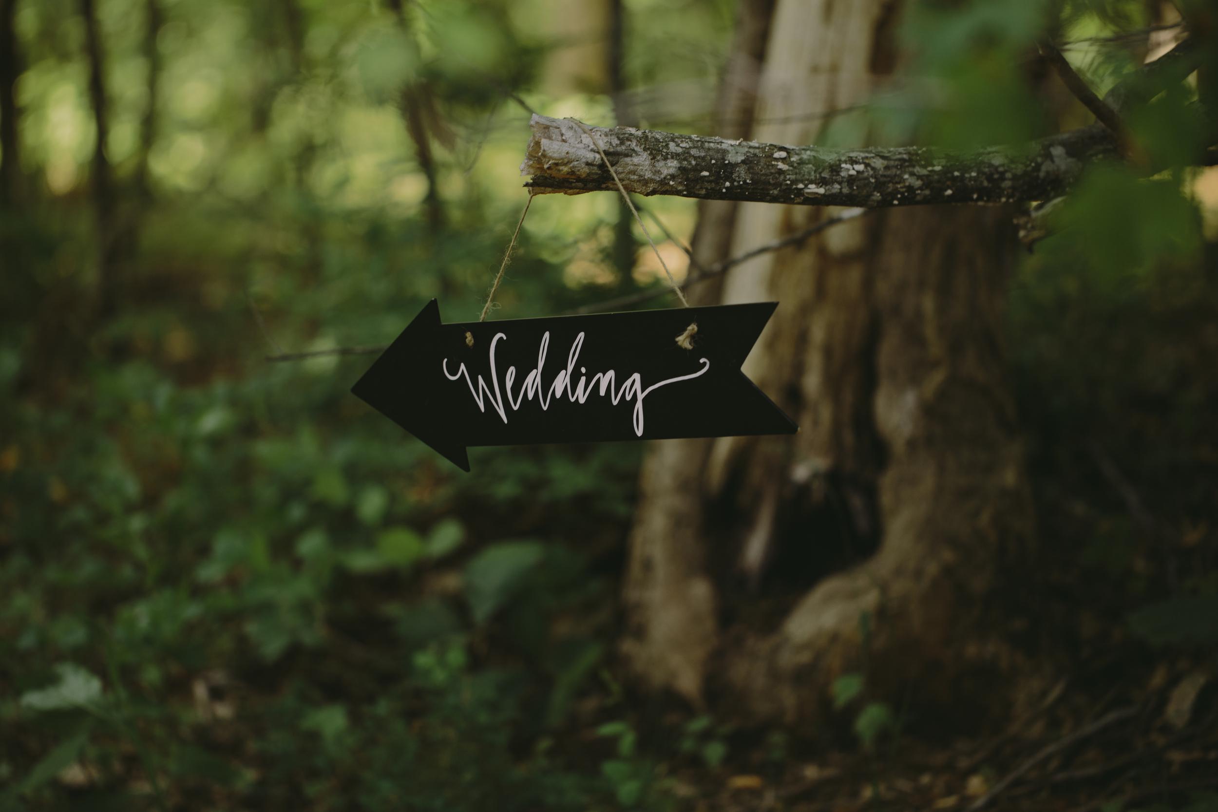 Zack + Hannah Millsaps Wedding in Greenville SC Nashville Wedding Photographer Photography Anthology-45.jpg