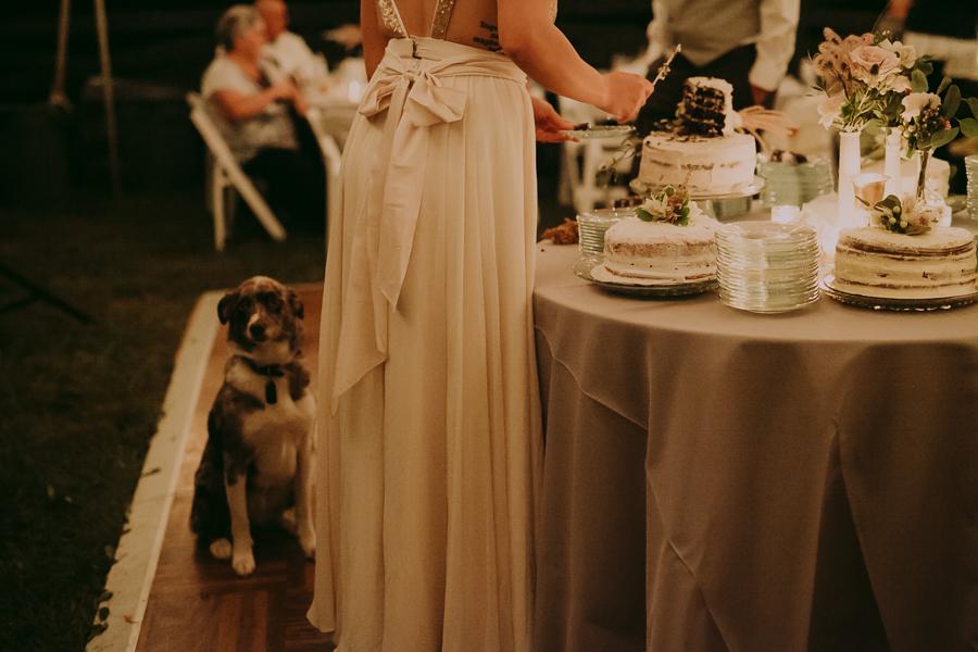E + J Wedding Nashville Wedding Photographer-89.jpg