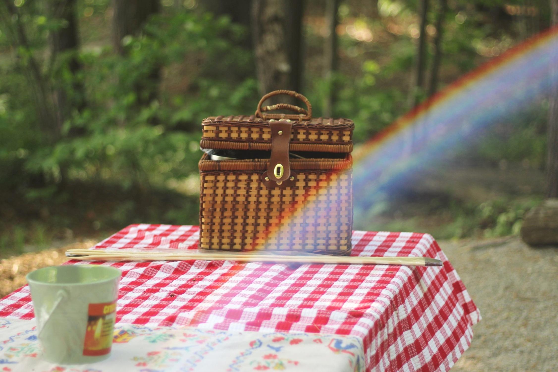 picnic-bonnie-kittle-98586-unsplash.jpg