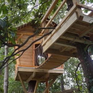 Whimsical Tree House