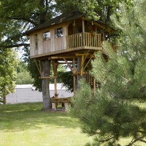 Large Tree Houses