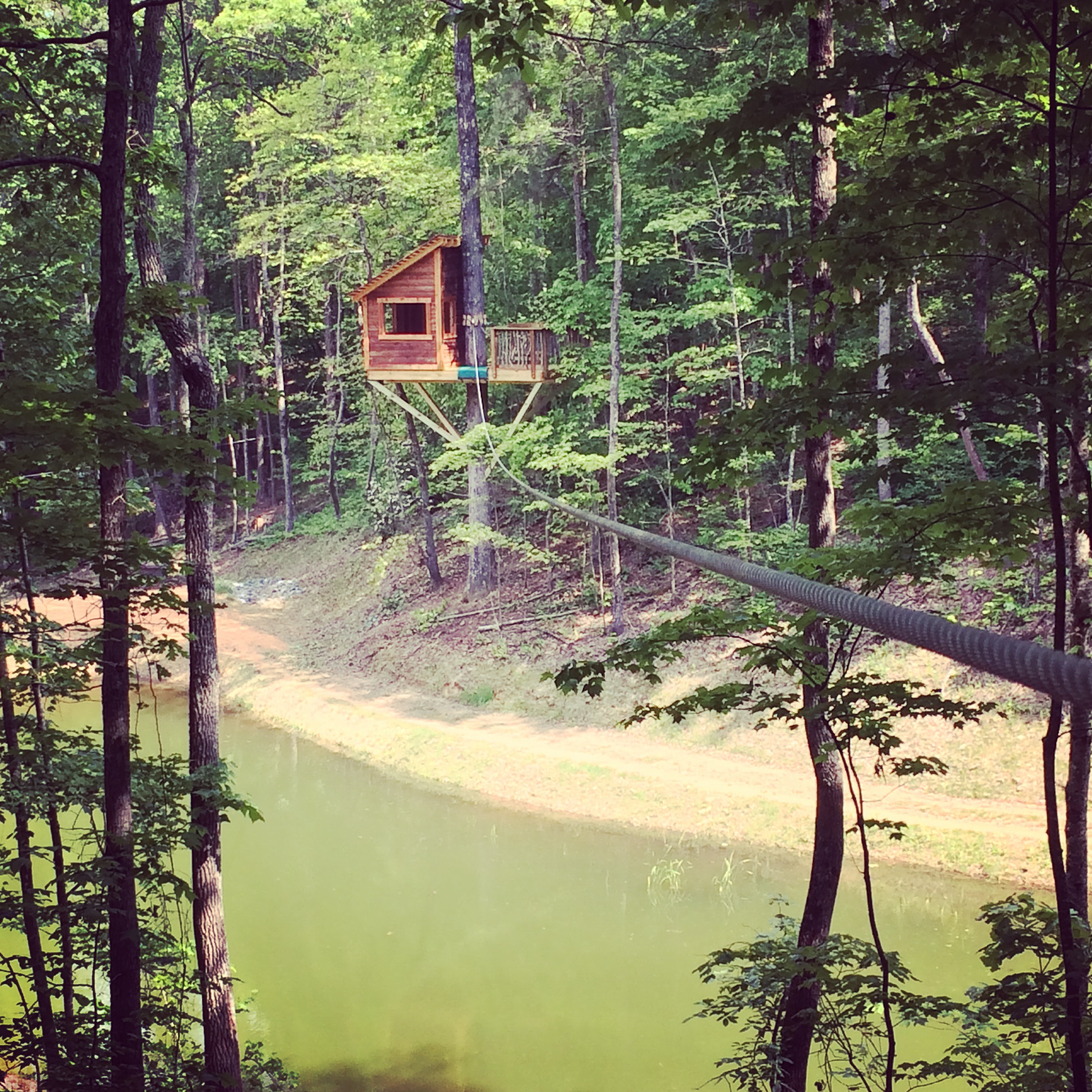 "Copy of <strong>Cabane et Zipline <br> sur le Lac</strong><a href=""/new-gallery-35"">Click Here For More Pictures »</a>"