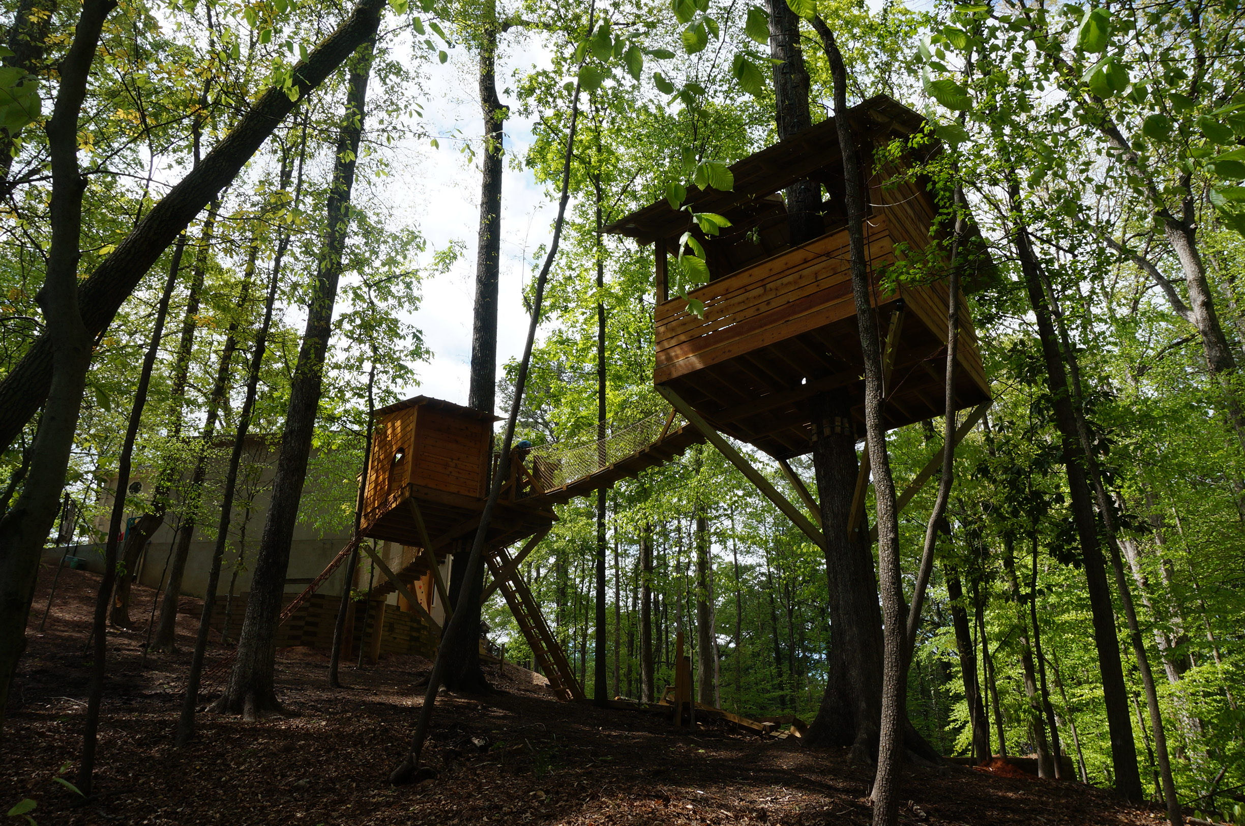 "<strong>Double Dream Treehouse</strong><a href=""/dream-treehouse"">Click Here For More Pictures »</a>"