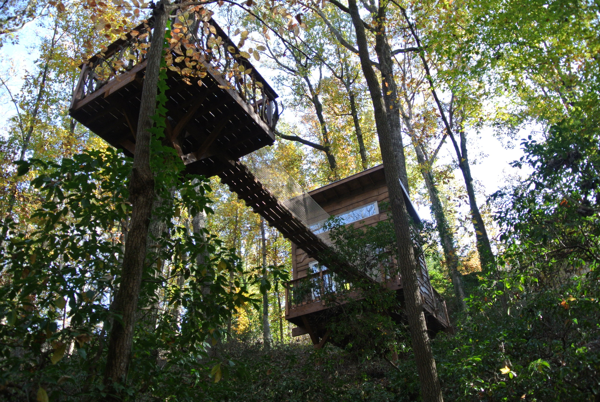 "<strong>Treehotel</strong><a href=""/airbnb"">Click Here For More Pictures »</a>"