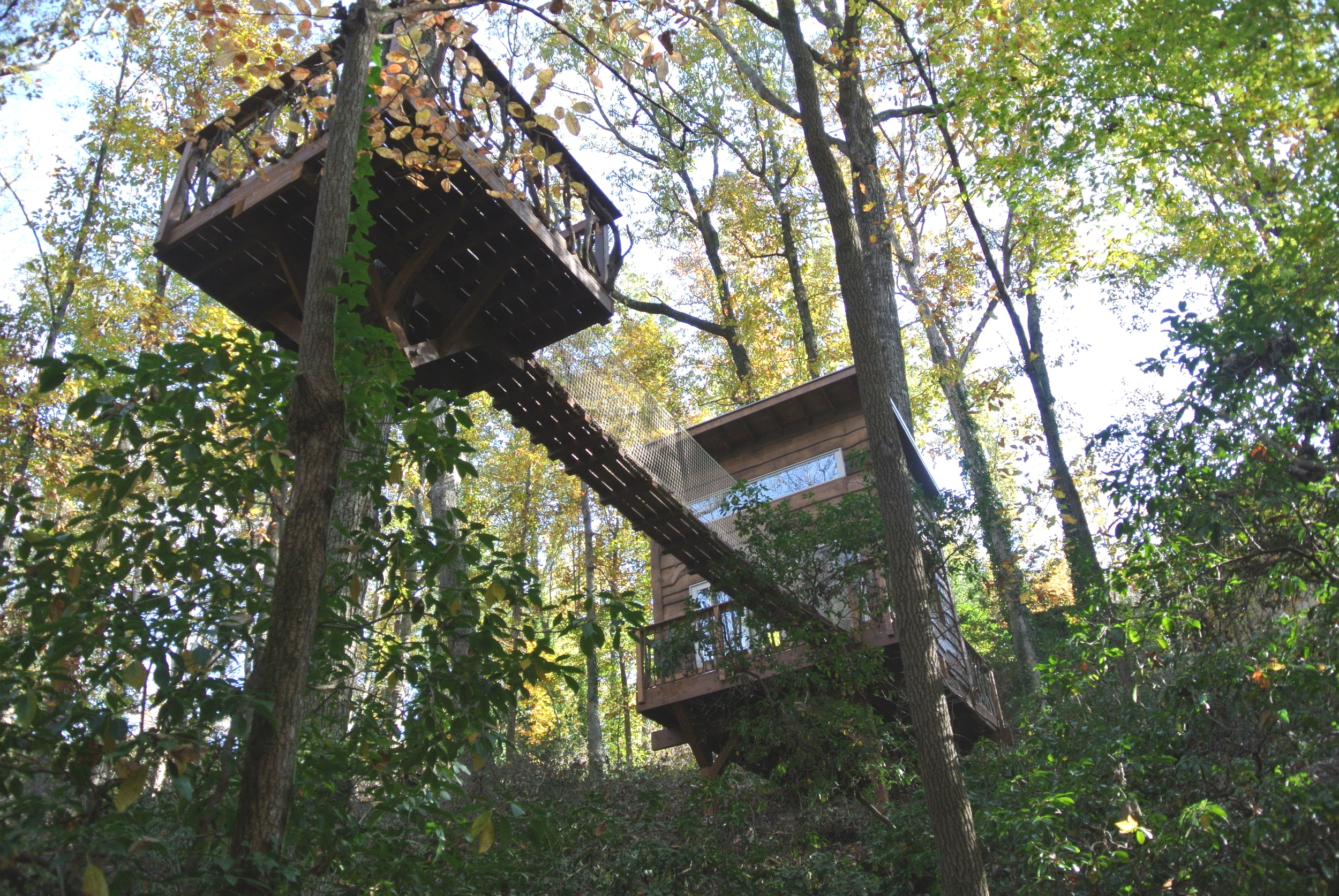 - Creating Custom Structures In The Treetops