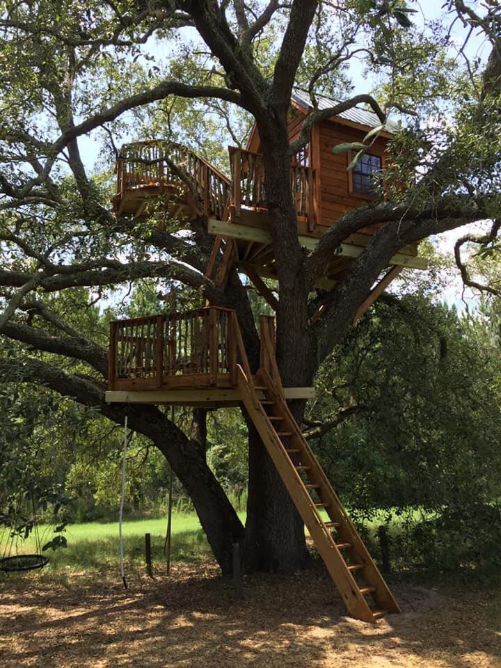 Live Oak Treehouse.jpeg