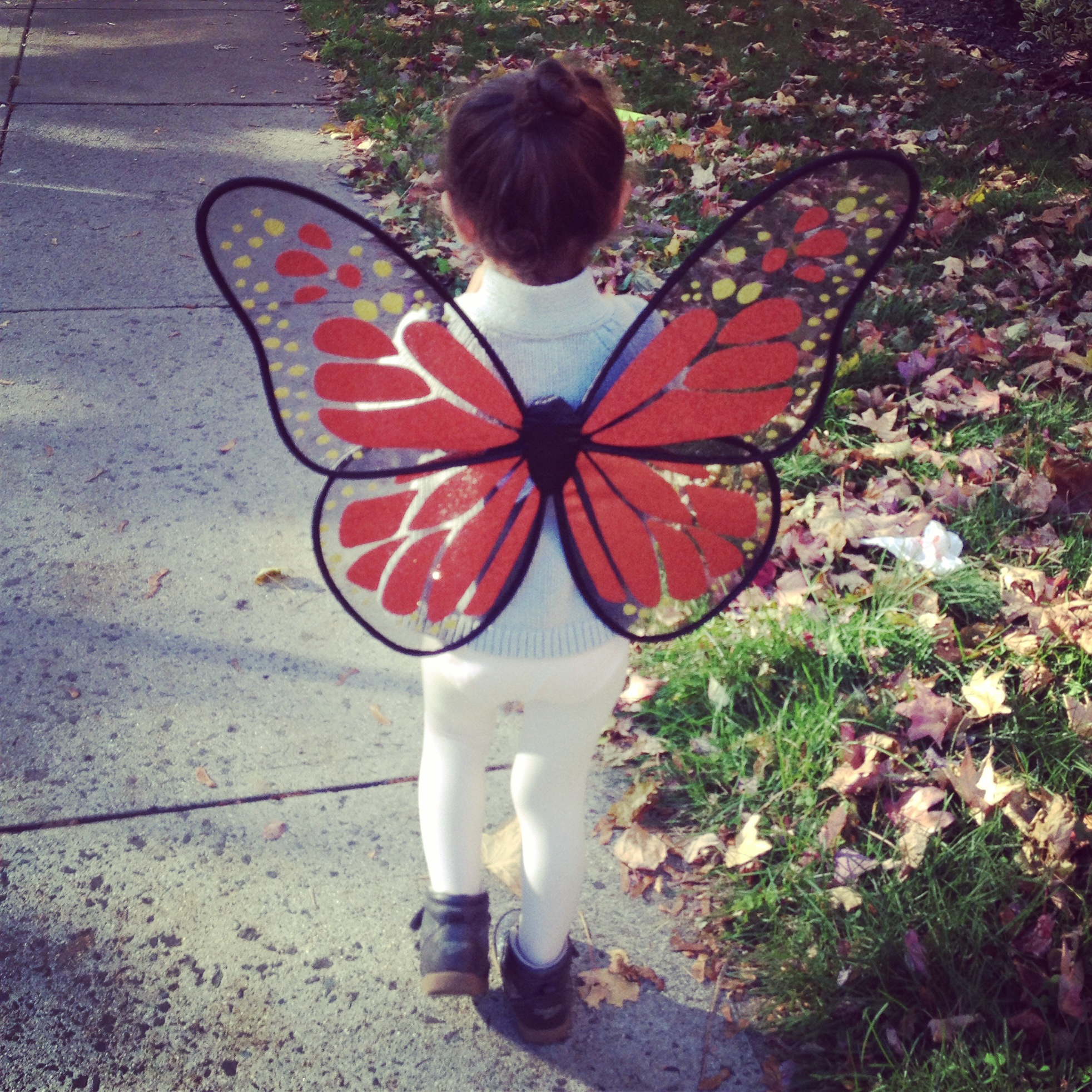 We're about to flutter away on our next adventure!