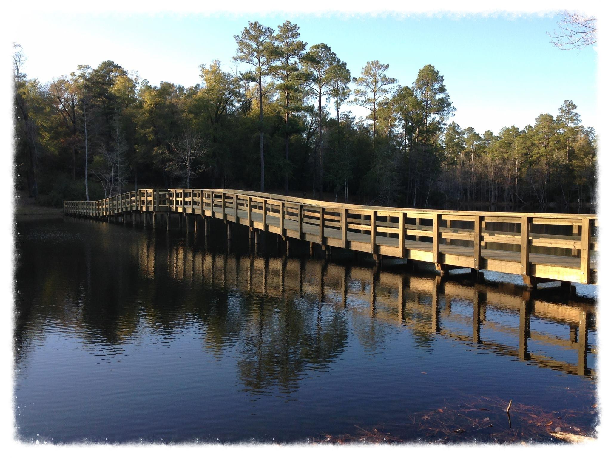Lake Bridge with Bench