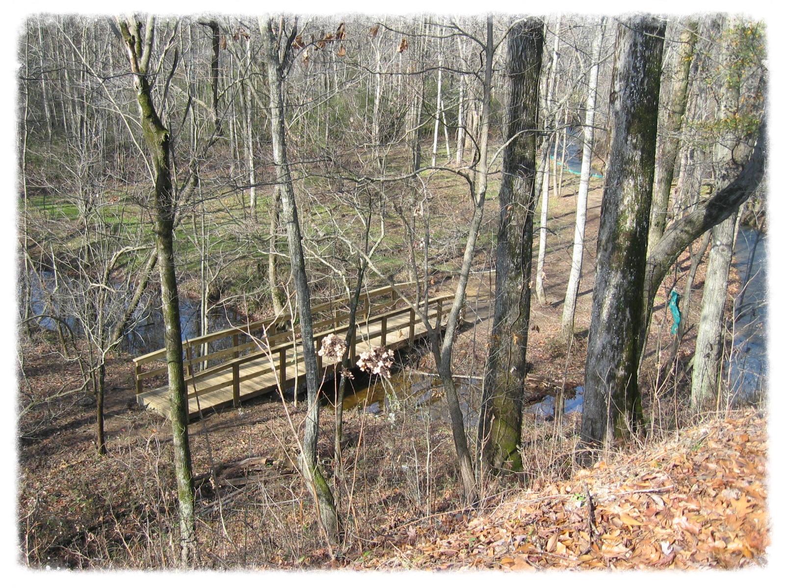 Nature Bridge