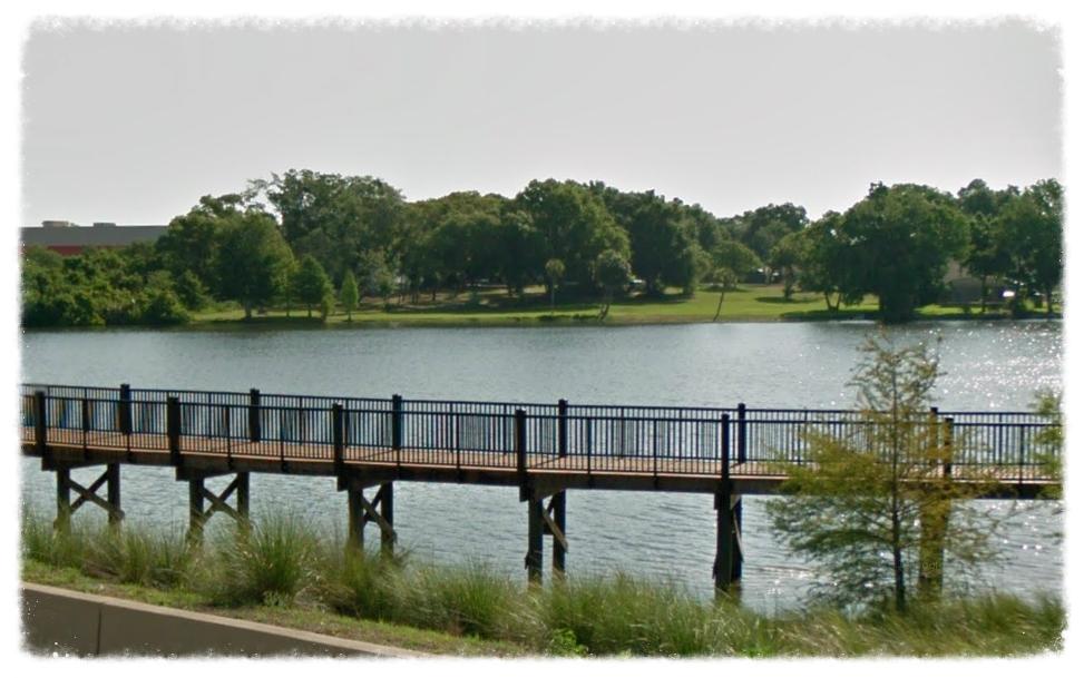 Boardwalk Bridge Over Water
