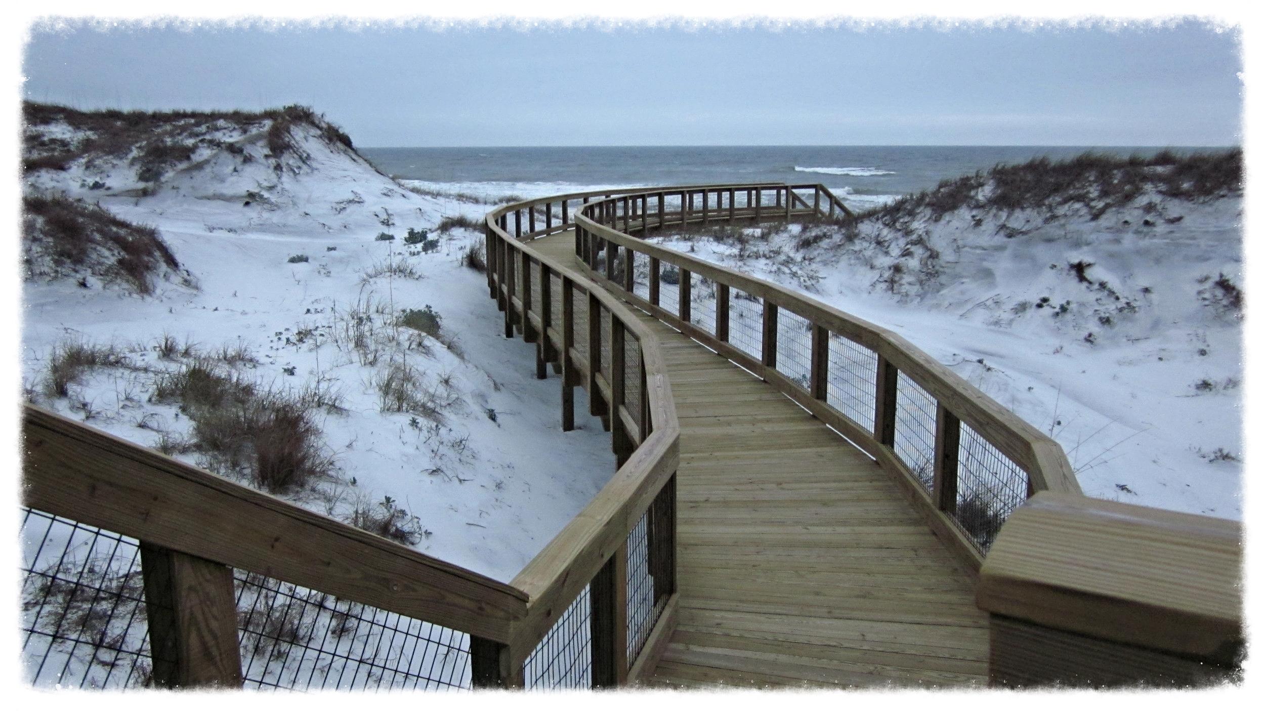Timber Boardwalk Construction