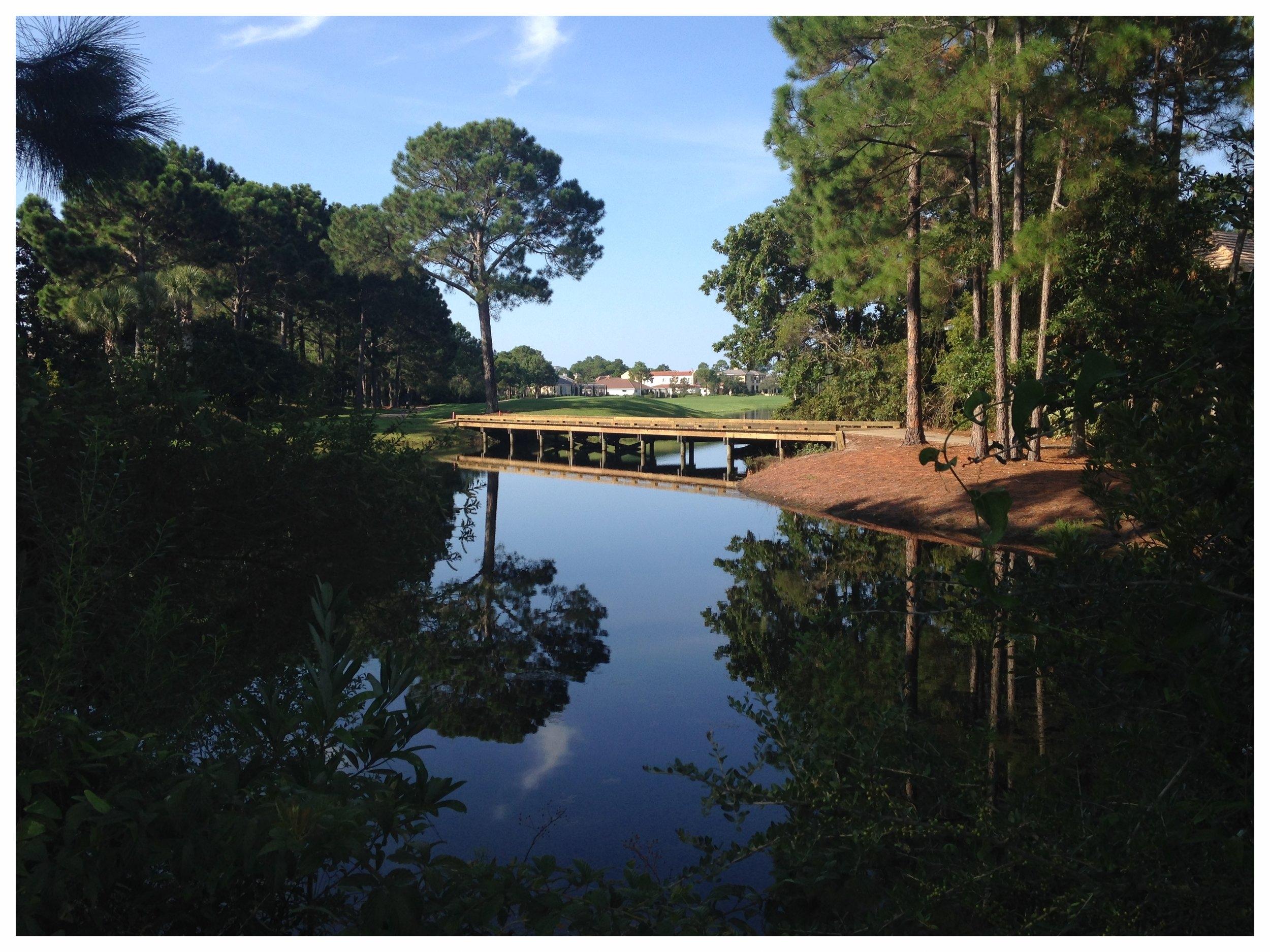 Golf Cart Bridge