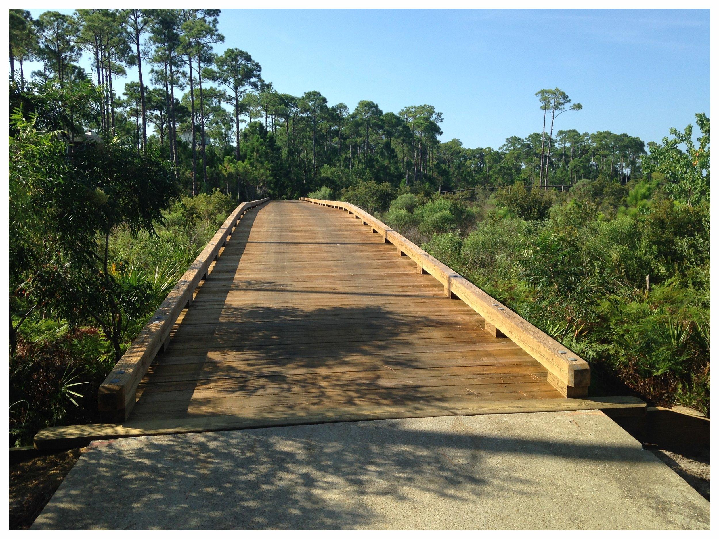 Timber Bridge Builder
