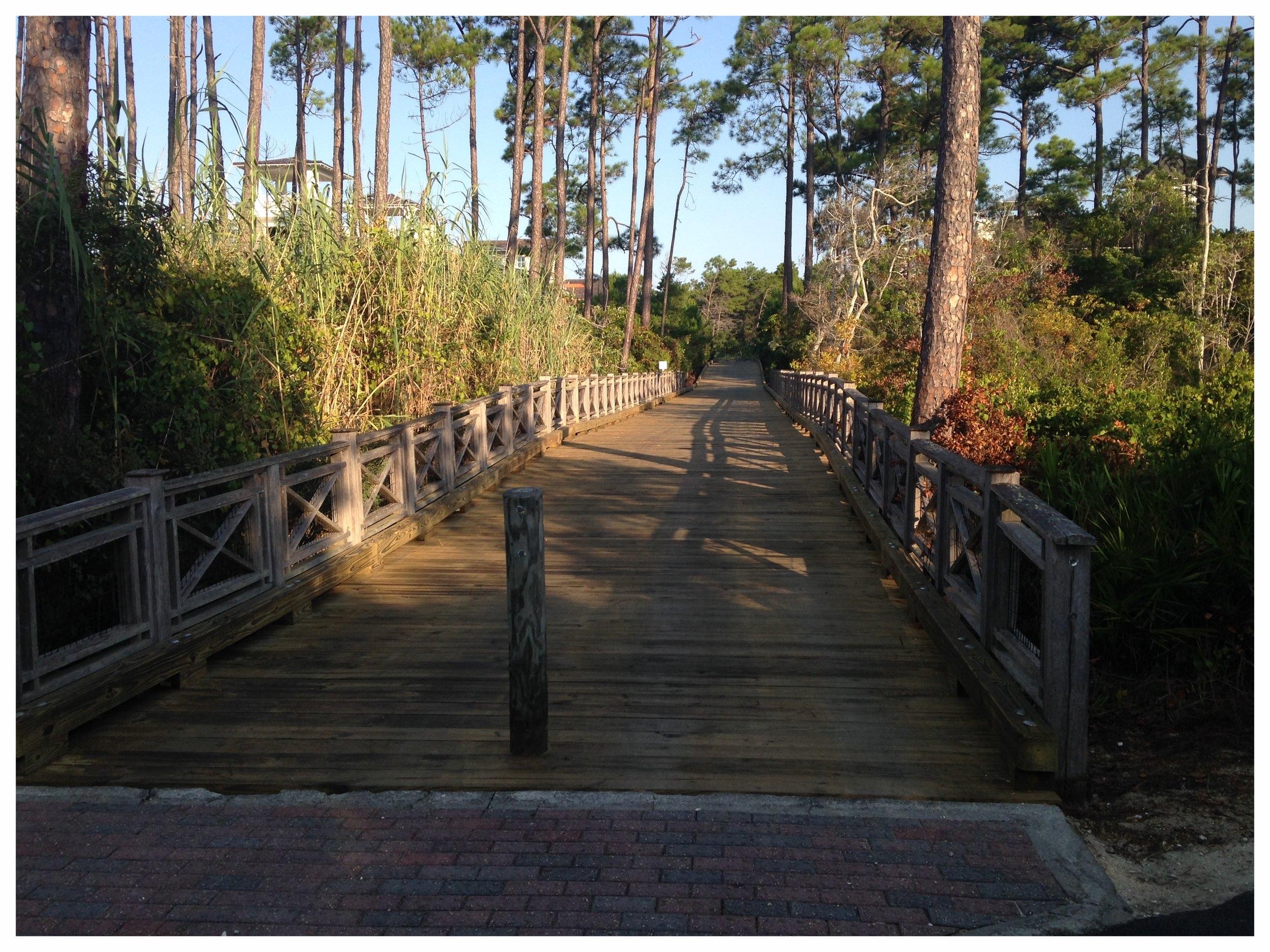 Nature Trail Boardwalk