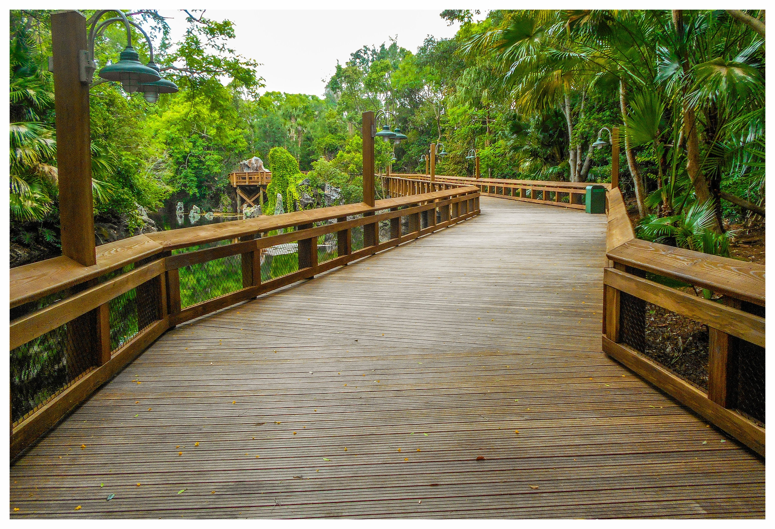 Wood Boardwalk Design and Construction
