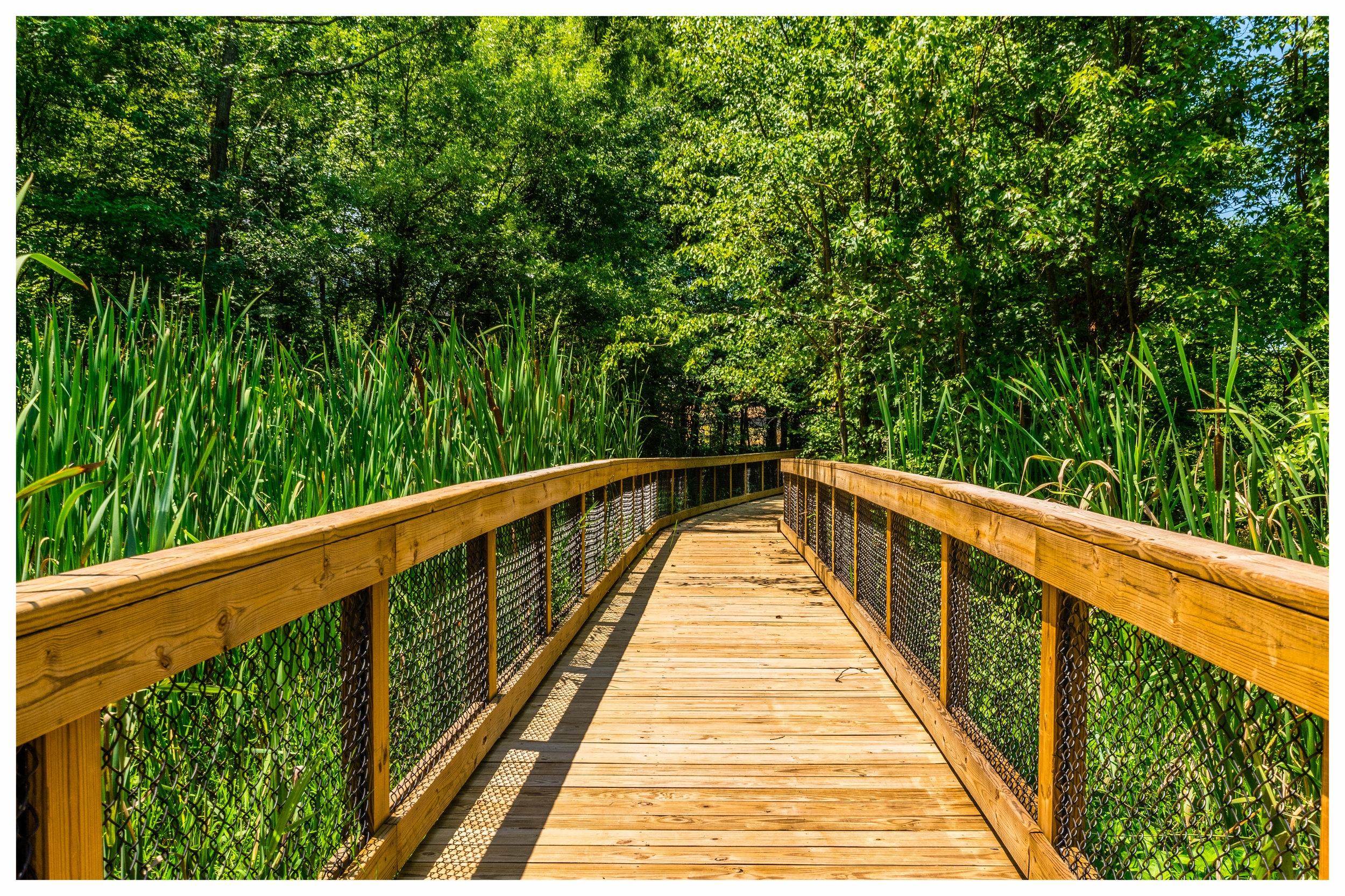 Nature Walk Construction Company