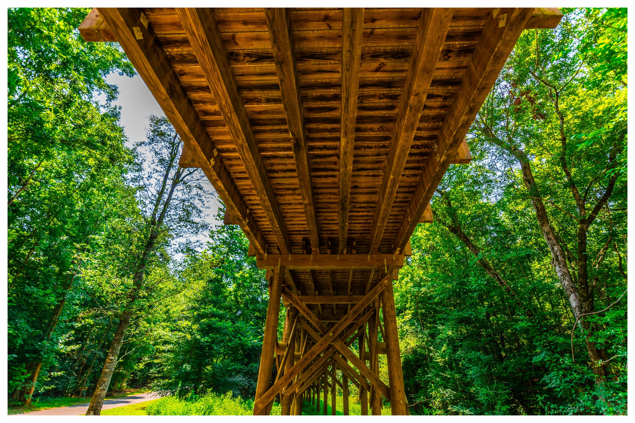 Timber Pedestrian Bridge Company