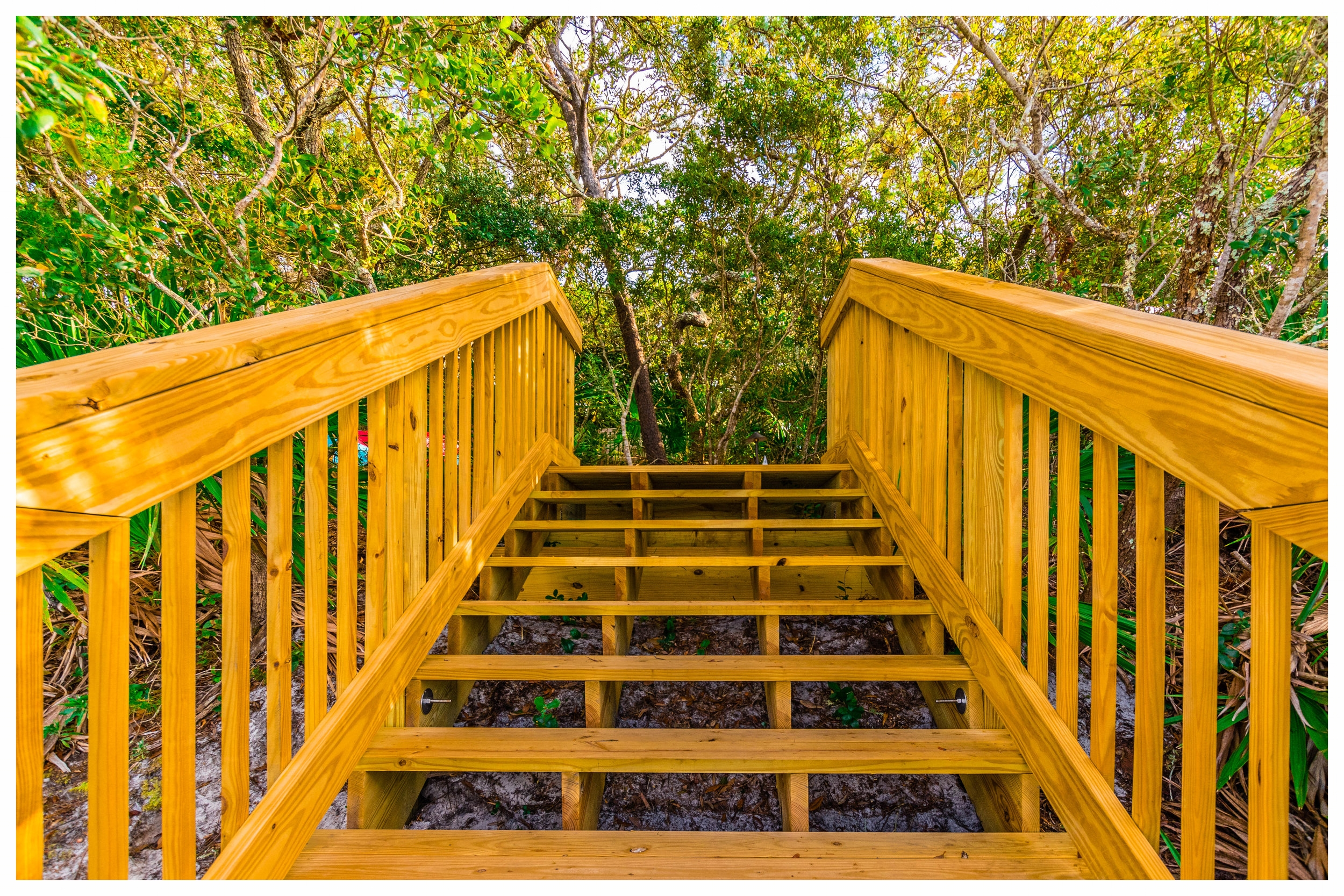 Wood Boardwalk Design