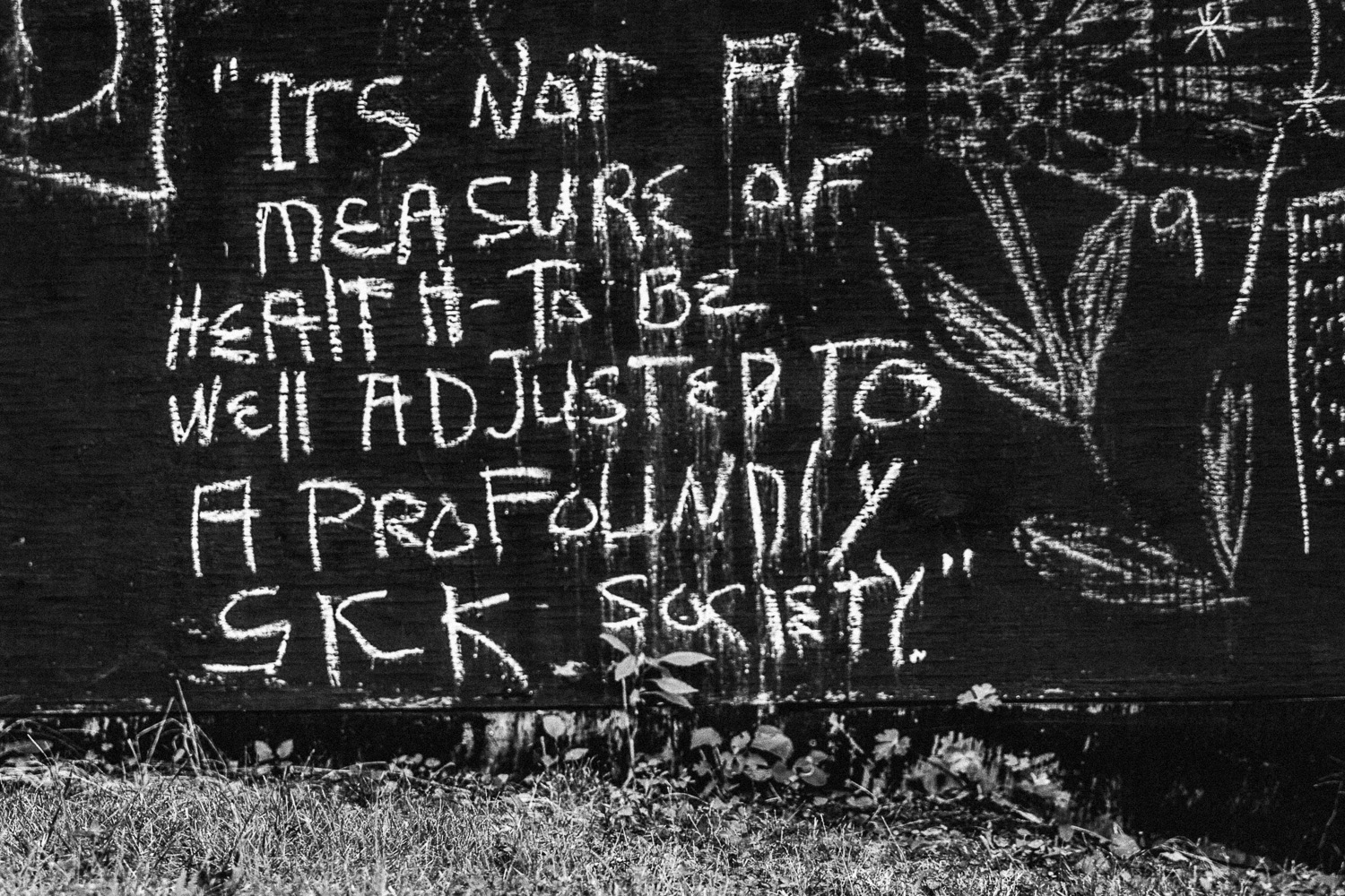 it's not a measure of health to be well-adjusted to a profoundly sick society