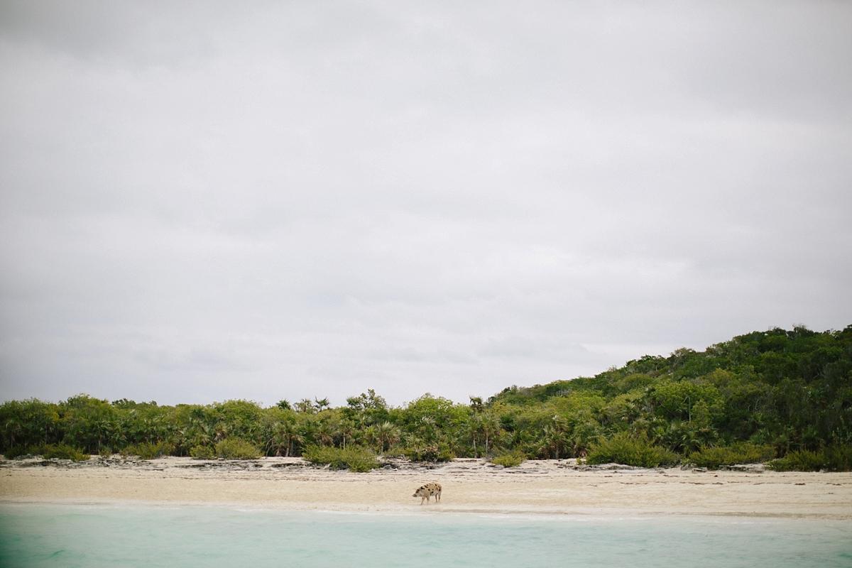 bahamas-destination-wedding-photographer-island-private-ceremony-staniel-cay_0009.jpg