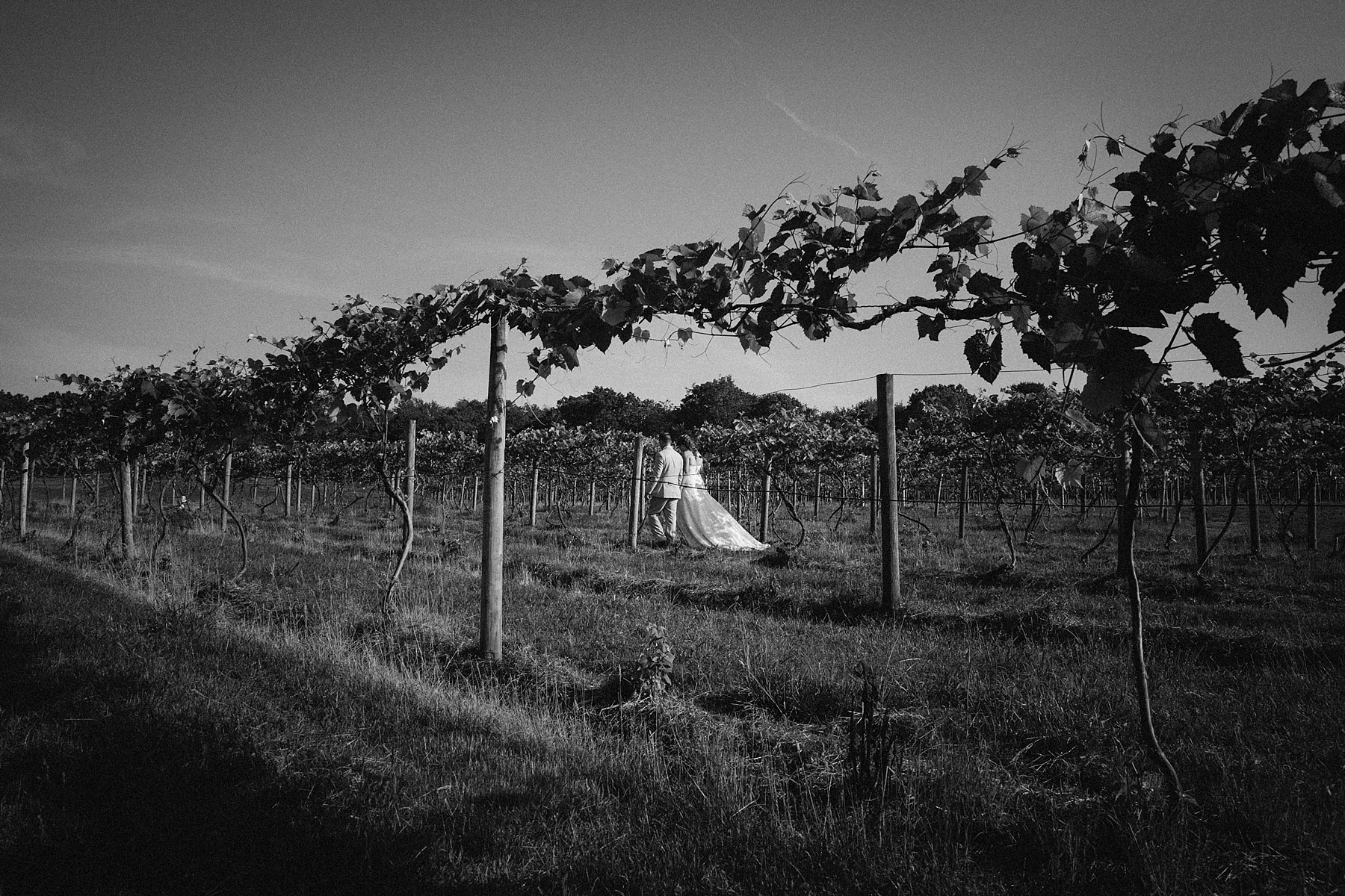 farm-wedding-engagement-session-destination-intimate_0037.jpg