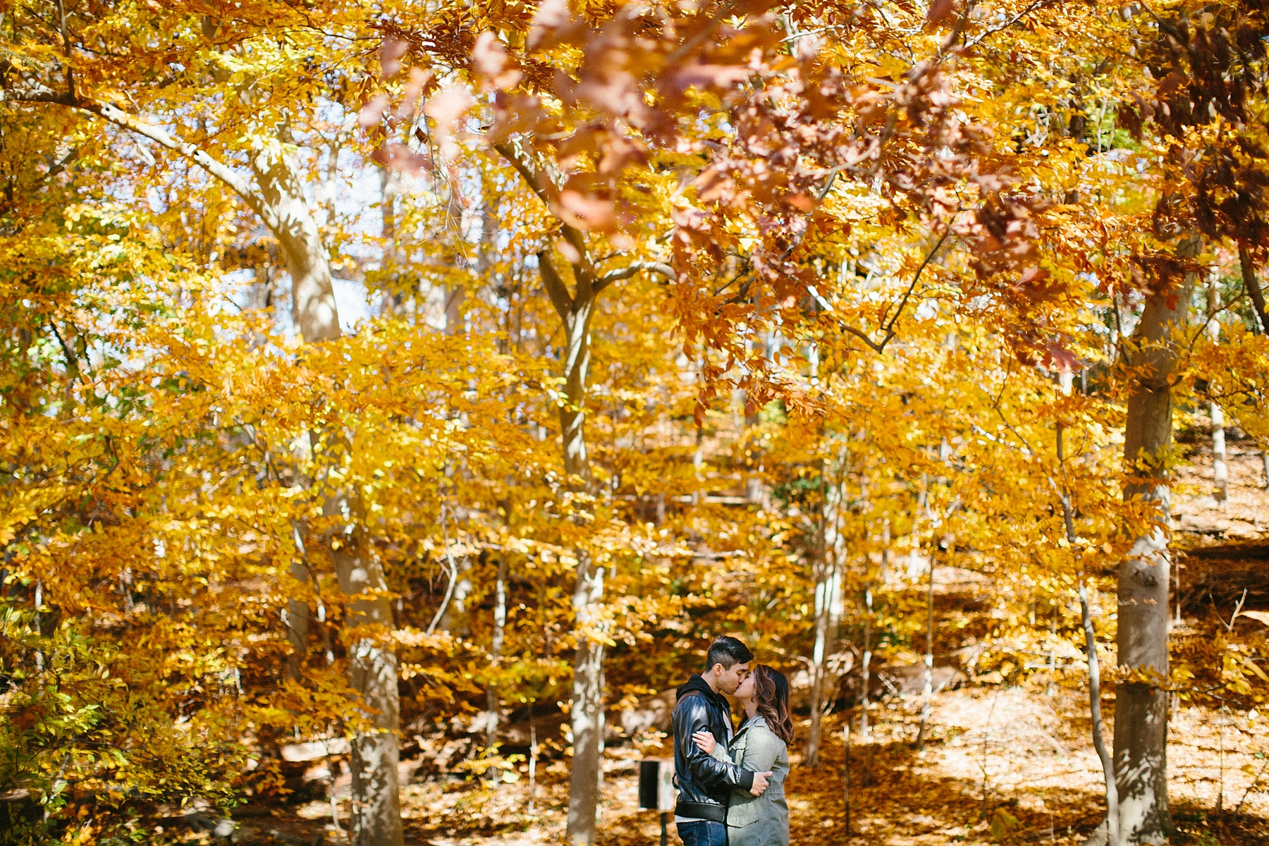 nj-arboretum-engagement-session-virgina_0009.jpg