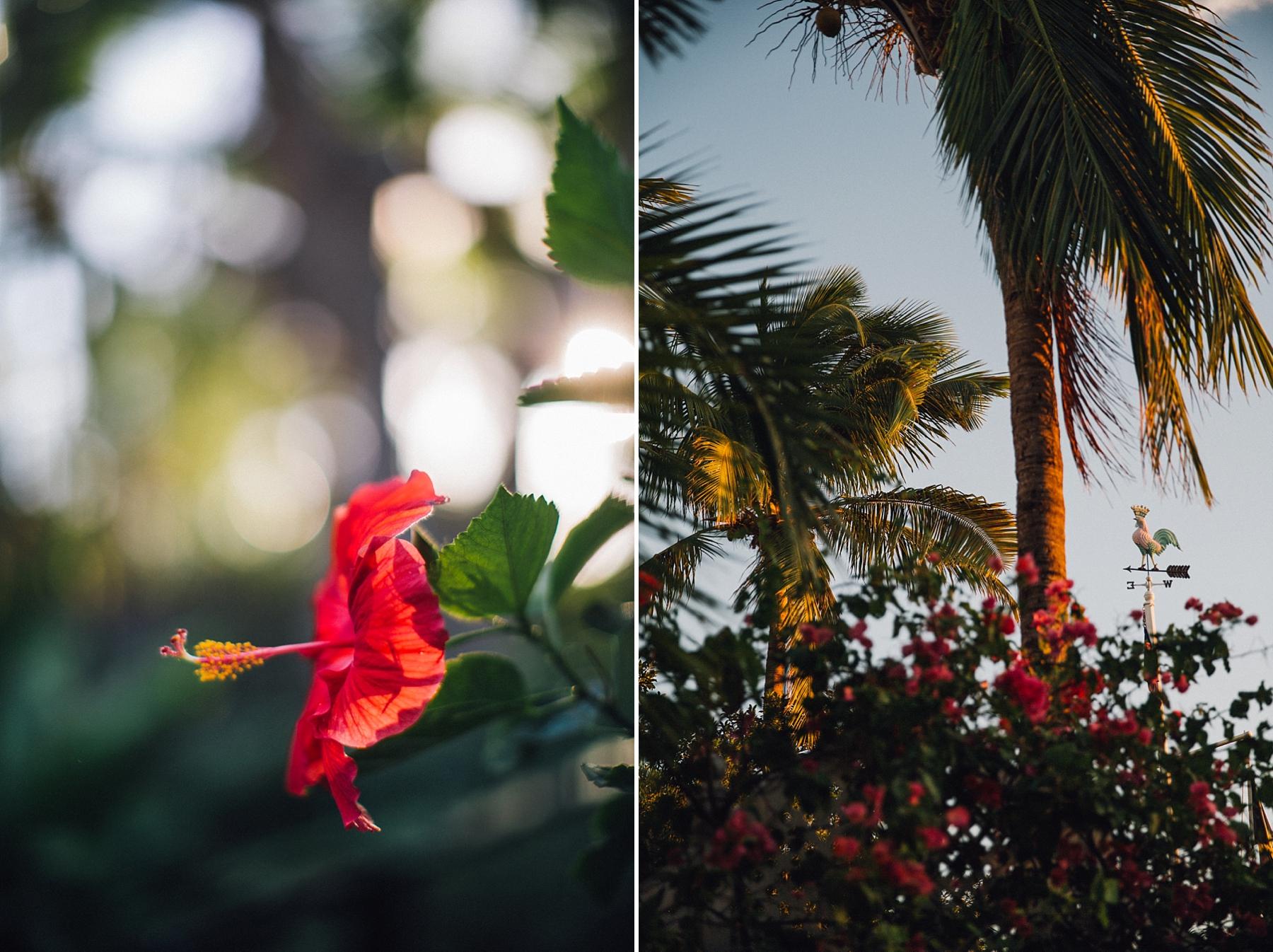 intimate-destination-wedding-beach-moments-harbour-island_0097.jpg