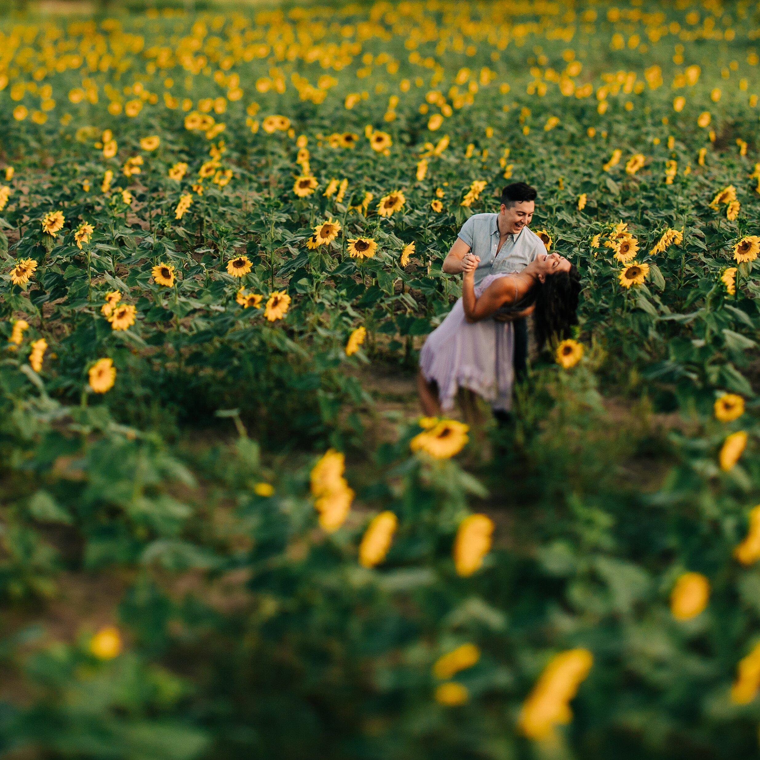 sunflower-field-engagement-session-nj_0008.jpg