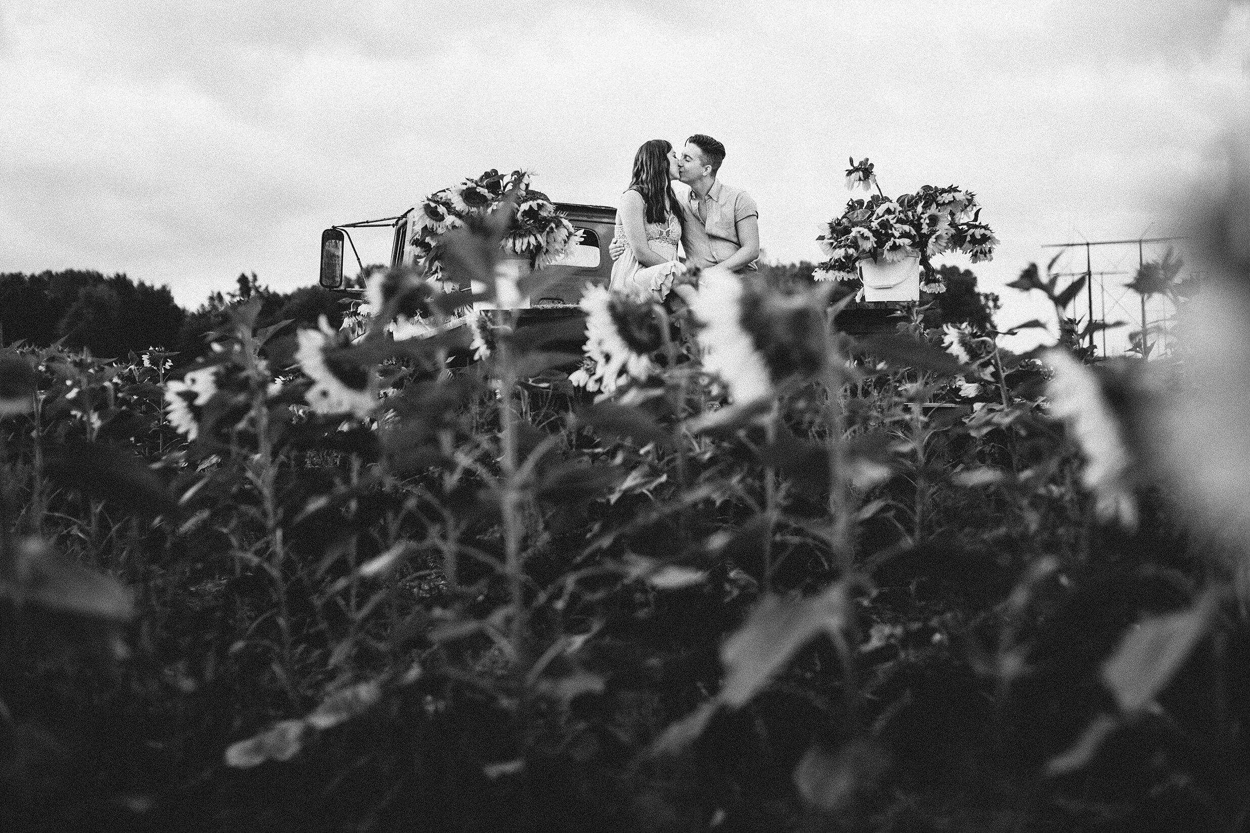 sunflower-field-engagement-session-nj_0021.jpg