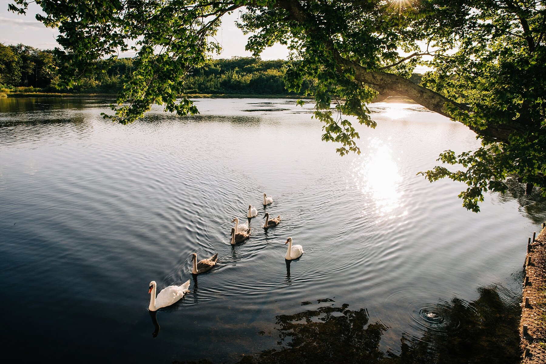 the-mill-lakeside-manor-spring-lake-wedding-photographer_0036.jpg