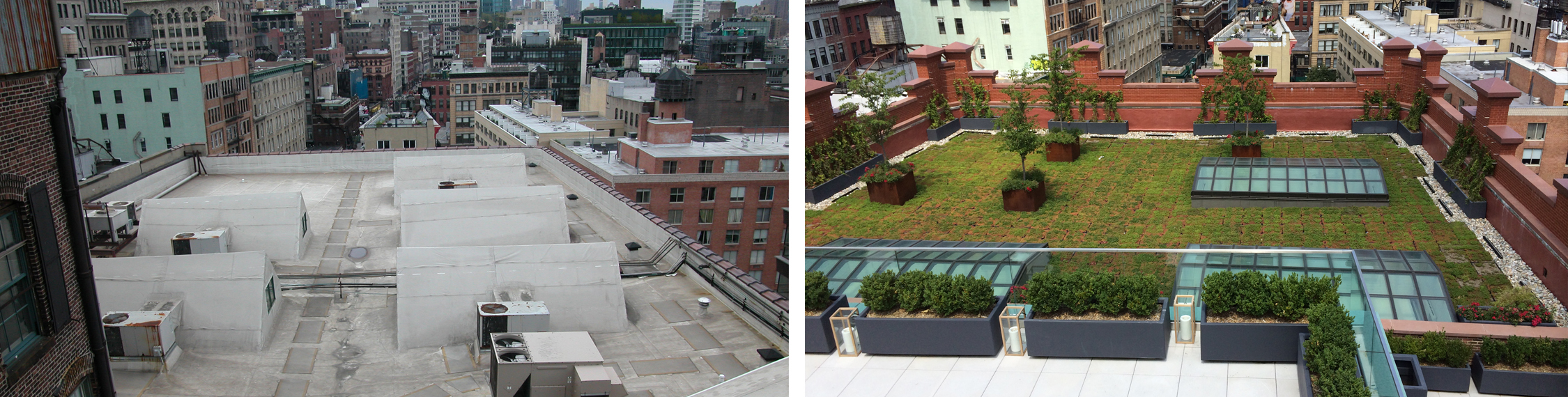 Restored parapets and green roof system visible from the rooftop.