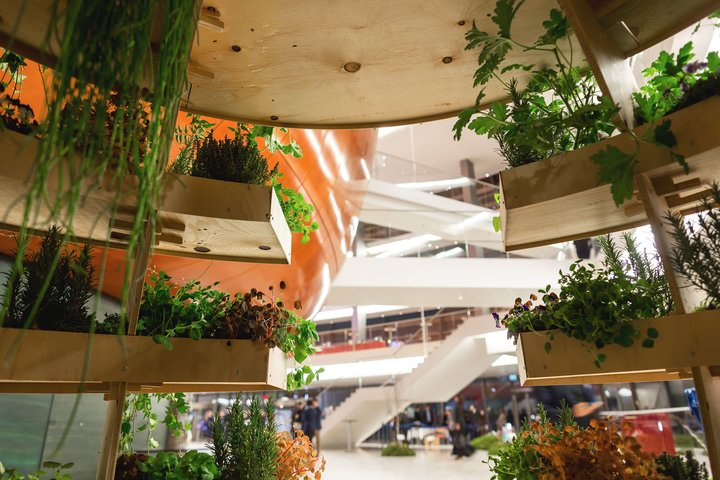 """The garden's """"slices"""" are designed so that water and light reaches each level."""