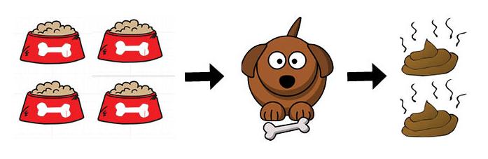 dog-food-digestibility.jpg