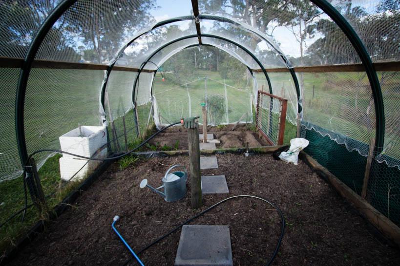 Covered Veggie Patch Inside || thinkbiglivesimply.com