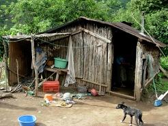 Old shack,Img1321.jpeg