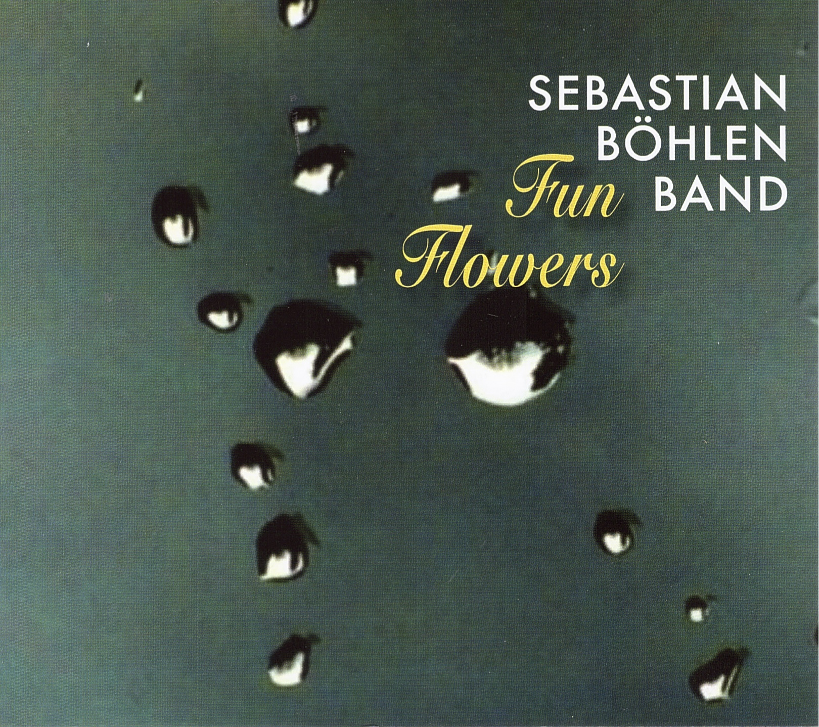 Sebastian Böhlen - Fun Flowers Cover.jpg