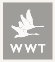 Wildfowl & Wetlands Trust
