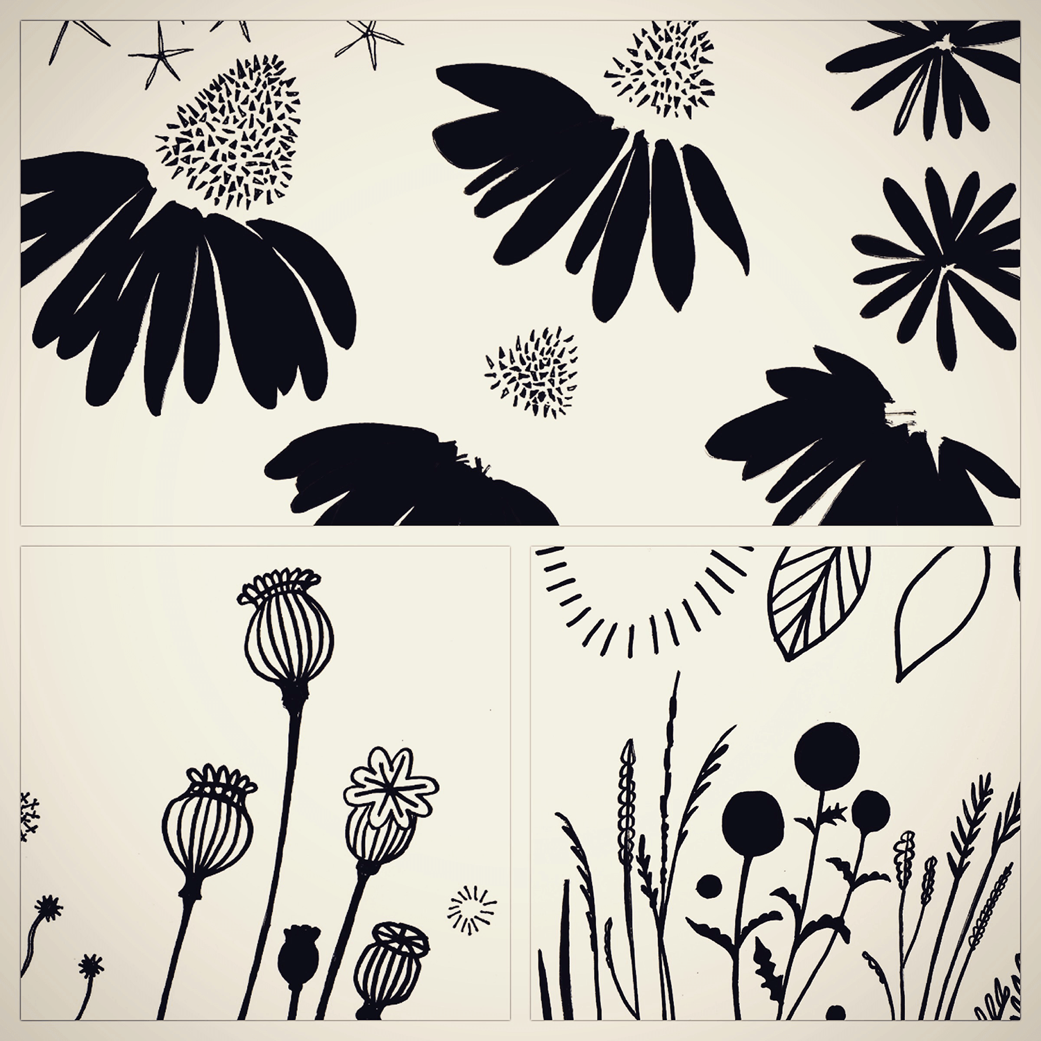Some flower elements, to be scanned and made into vectors. These were coloured and composited together digitally to form the basis of a new brand identity for a gardening business.