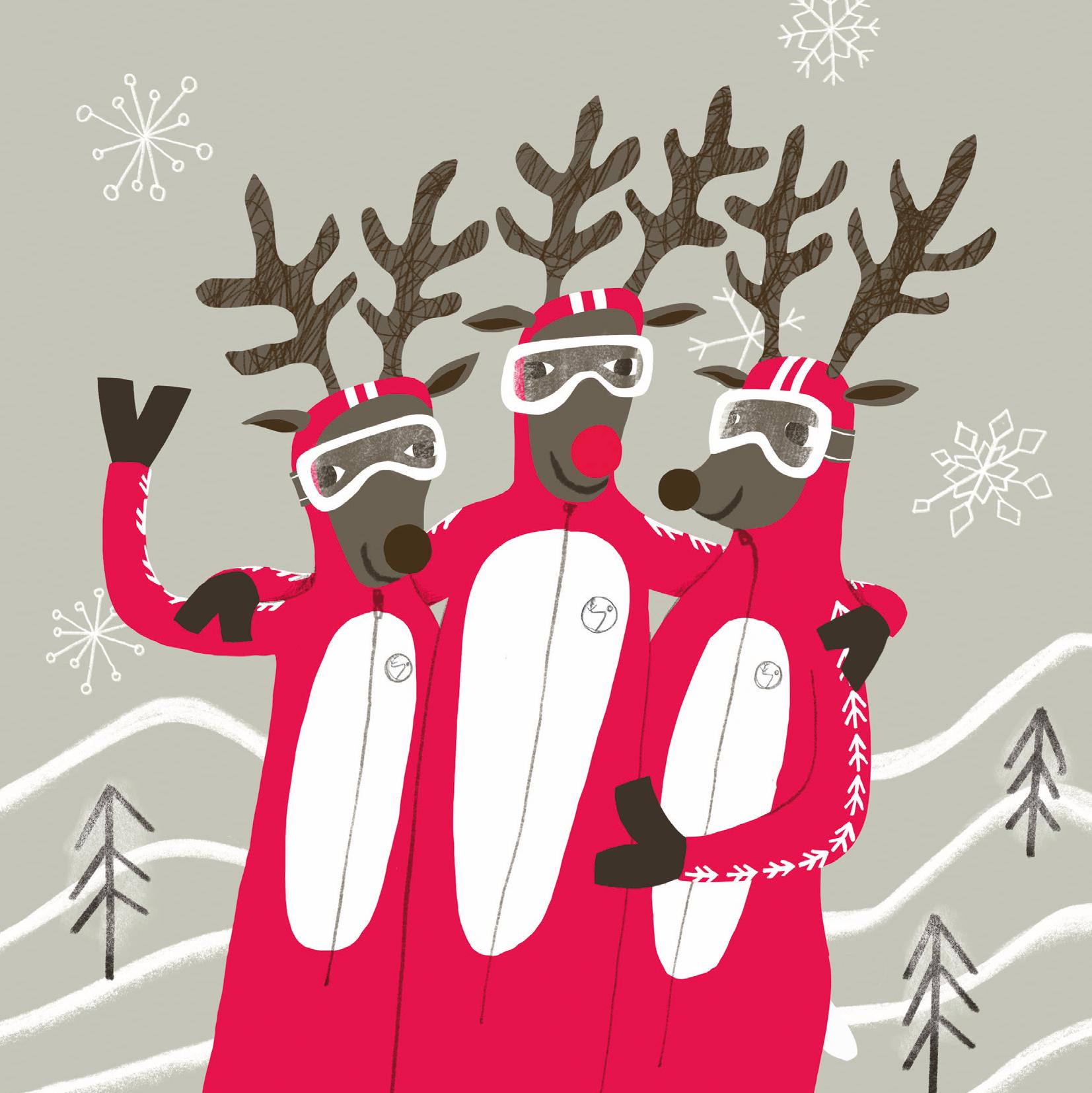 Reindeer Race Team