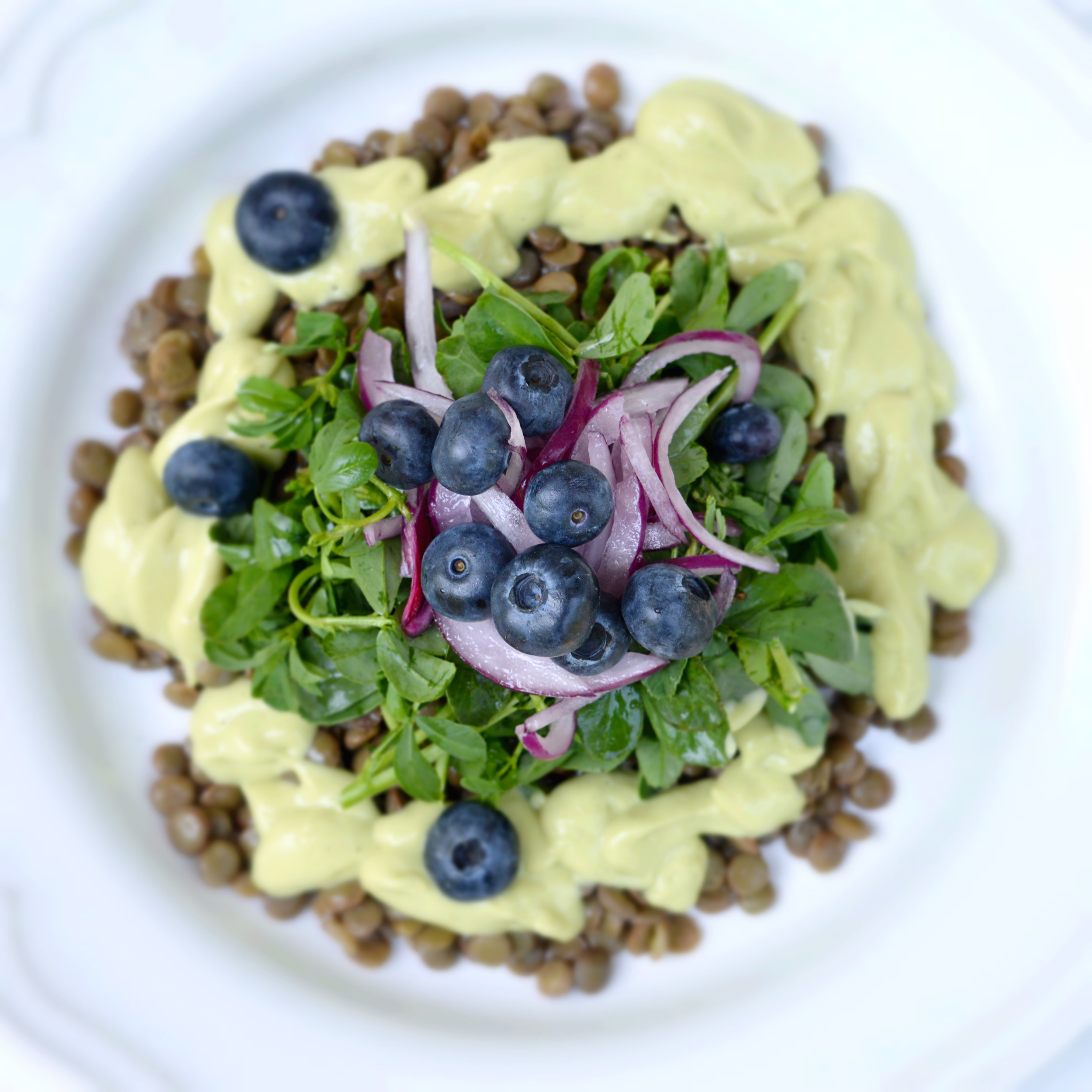 Green Lentil,watercress , blueberry salad