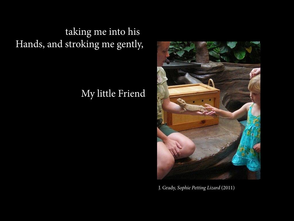 J. Grady,  Sophie Petting Lizard  (2011)