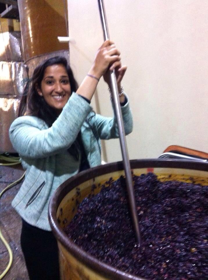 Sonal having a go at making wine in Provence!