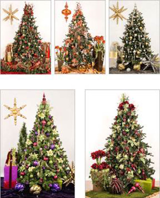 platinum_touch_design_holiday_trees.jpg