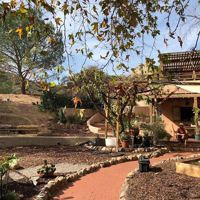 We're home! Topanga evacuation lifted yesterday and we got home last night. The plants are all now happily watered, the ravens are back singing songs, the pups and we are all joyfully laying on the earth listening to the trees. So grateful for the safety of our sweet canyon home, the land and creatures, for the firefighters, prayers, and all involved in support. Sending so much love and offerings any way we can to those that have lost their homes, belongings and the lives up in Paradise. So many prayers.  #Woolseyfire #topanga #vesselandsoul #foriaheartquarters #homesweethome #grateful #grounded