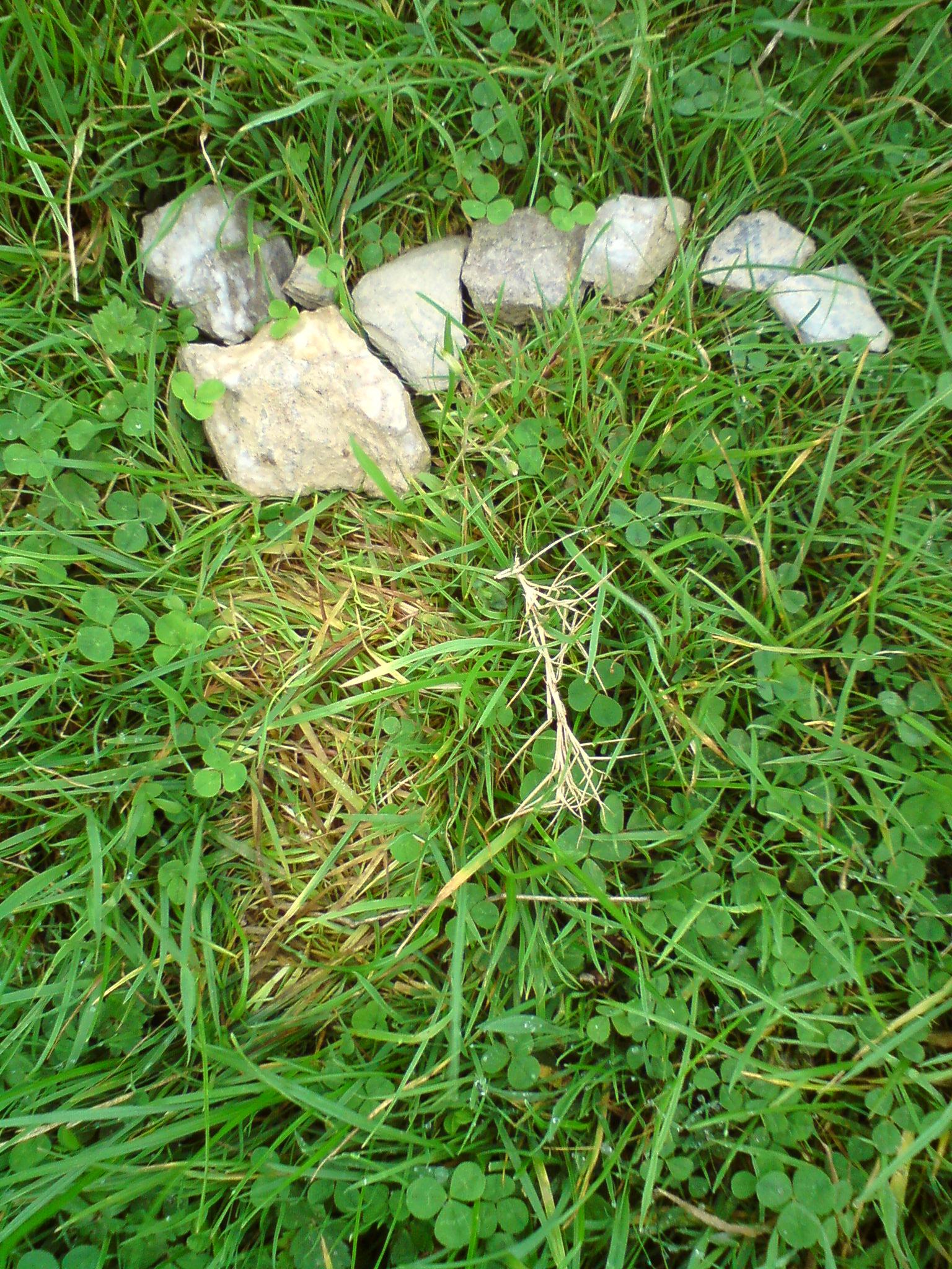 DSC01177 stone r under erasure.JPG