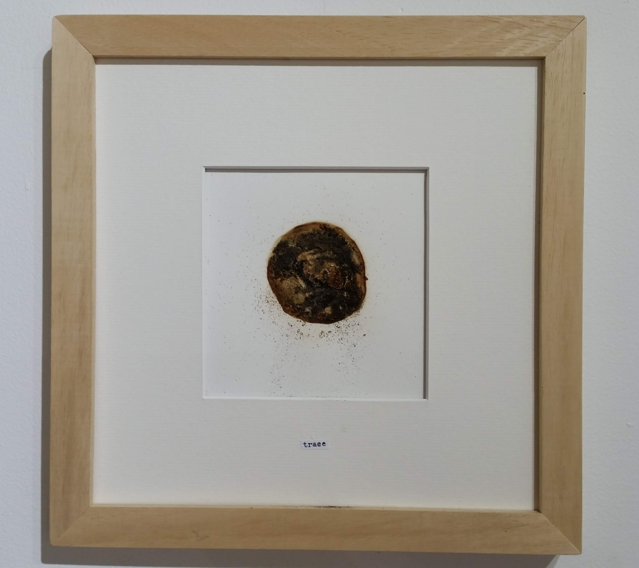 """""""trace"""" from The Same Apple: Story I (2014) by Camilla Nelson"""