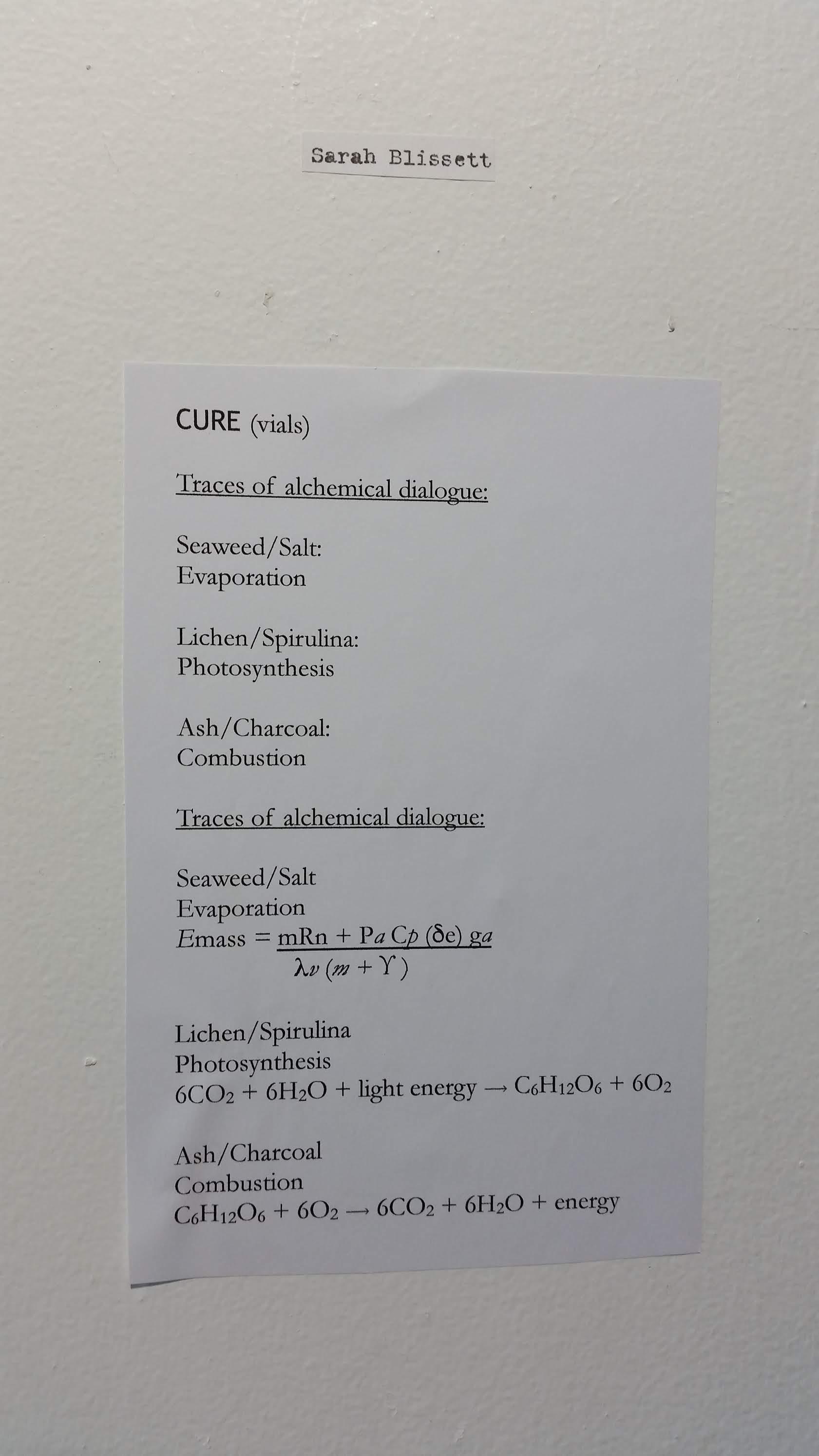 Description of CURE (2018) by Sarah Blissett