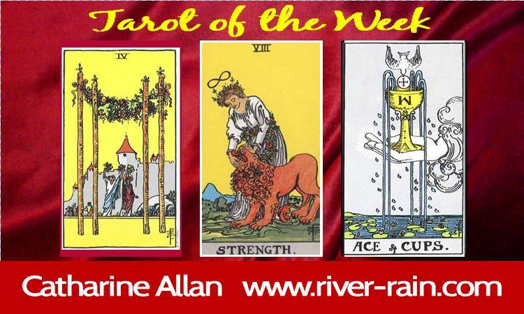 tarot of the week November 13th to 20th.jpg
