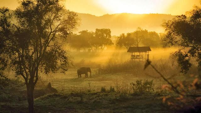 four+seasons+tented+-+elefantes.jpg